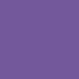 摄影摄像技术(高起专)